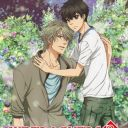 Poster of Super Lovers 2