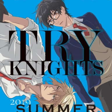 Poster of Try Knights